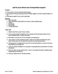 dna rna protein synthesis worksheet study guide dna protein