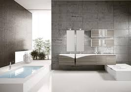 Modern Bathroom Tubs  Bathroom Remodeling Ideas For Built In - Latest trends in bathroom design