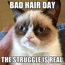 Bad Hair Day Meme - bad hair day i have a few openings this strong styles with