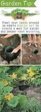 Best 25 Outdoor Garden Sink Ideas On Pinterest Garden Work 921 Best Home Gardening Ideas Images On Pinterest Gardening