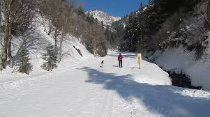 millcreek canyon nordic skiing secondary page