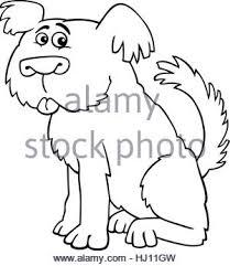 cartoon illustration funny shaggy sheepdog bobtail dog