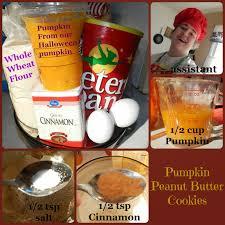 carma poodale pumpkin peanut butter cookies for dogs