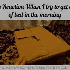 Get Out Of Bed Meme - when i try to get out of bed in the morning by reactiongifs meme