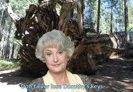 Lost Keys Meme - golden girls meme dorothy lost keys uprooted mighty sequoia golden