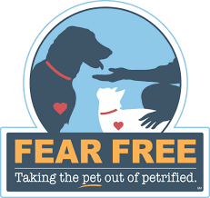 fear clinic creating happier fear free veterinary visits jet city animal clinic