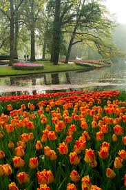 Most Beautiful Gardens In The World Best 25 Most Beautiful Gardens Ideas On Pinterest Palace Garden