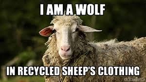 Meme Clothing - 23 funny sheep memes botch