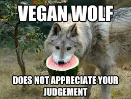 Angry Wolf Meme - vegan wolf does not appreciate your judgement vegan wolf quickmeme