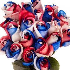 white and blue roses white blue roses tinted i roses