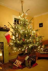 kitchen mini tree lights blinking light