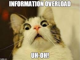 Overload Meme - scared cat meme imgflip