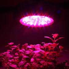 horticultural led grow lights apollo horticulture gl60led full spectrum 180w led grow light for
