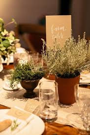 Potted Plants Wedding Centerpieces by 60 Unique Ways To Use Potted Plants In Your Wedding U2013 Page 9 U2013 Hi