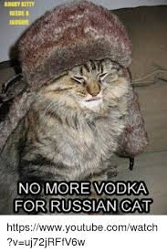 Angry Cat No Meme - angry kitty no more vodka for russian cat httpswwwyoutubecomwatch v