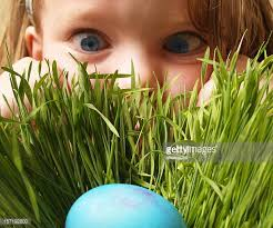 easter pictures easter egg stock photos and pictures getty images
