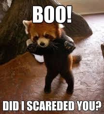 Boo Meme - just drop boo unity forum