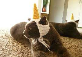 cat unicorn costume crochet pattern cat halloween costume for