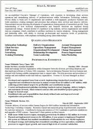 Sample Resume Executive Summary by Executive Summary Resume U2013 Resume Examples