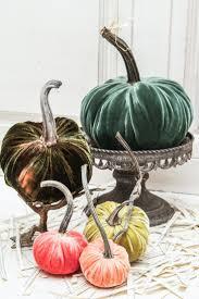 18 best halloween ideas images on pinterest halloween stuff