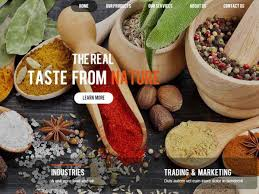 neti5 web solutions web designing company kochi kerala