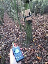tree ears microphone setup recordings of nature s