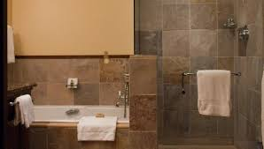 walk in shower ideas no door chair ideas and door design