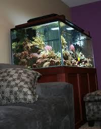 aquarium lights for sale 44 best led aquarium lights images on pinterest fish aquariums