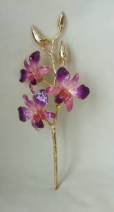 Gold Dipped Roses 24k Gold Dipped Orchid Lilac And Pink Dendrobium