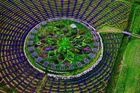 west michigan is home to a giant lavender labyrinth mental floss