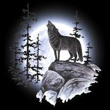 hoodie hooded sweatshirt wolf howling moon wilderness