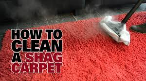 how to clean rugs how to steam clean a shag carpet dupray