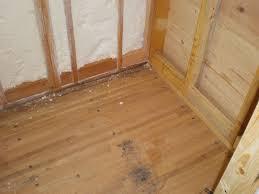 a tiny home companion bathroom floor check