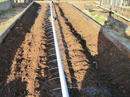 best 25 garden watering system ideas on pinterest watering
