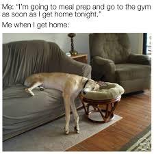 Next Gen Dev Meme - fitness memes home facebook