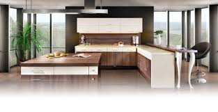 The Kitchen Cabinets And Remodelling Source And Design Envy Me - European kitchen cabinet