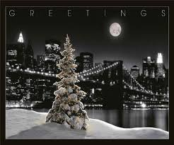 bulk christmas cards christmas season pearl greeting cards with pearl envelopes loldev