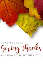 109 best gratitude thanksgiving images on gratitude