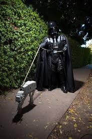 cuteness awakens viii dogs ready star wars