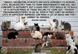 Herding Cats Meme - herding cats we fucking love atheism