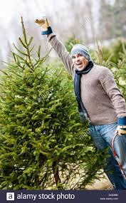 cut your own christmas tree farms christmas lights decoration
