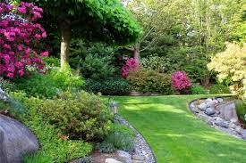 sloping garden ideas gravel stones shrubs trees 1000 images about