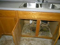 Kitchen Cabinets Restoration Mold Restoration Archives Mmp Building Remodeling And Restoration