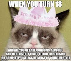 Birthday Memes 18 - image tagged in grumpy cat birthday memes grumpy cat meme so true so