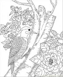 complex bird coloring pages free download complex bird coloring