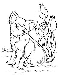 coloring book dog kids coloring