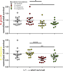 phylosymbiosis relationships and functional effects of microbial