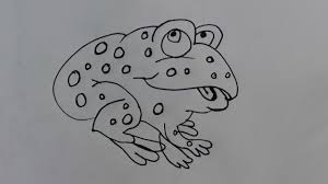 how to draw frog draw a realistic frog draw a frog youtube youtube