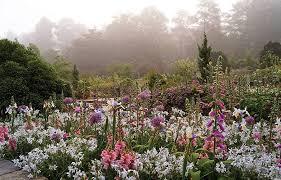 contributing photographers duke gardens