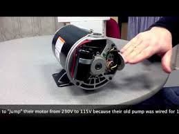 how to convert an inground pool pump motor from 230v to 115v youtube